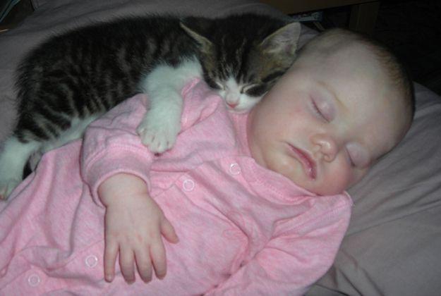 Дети и животные фото