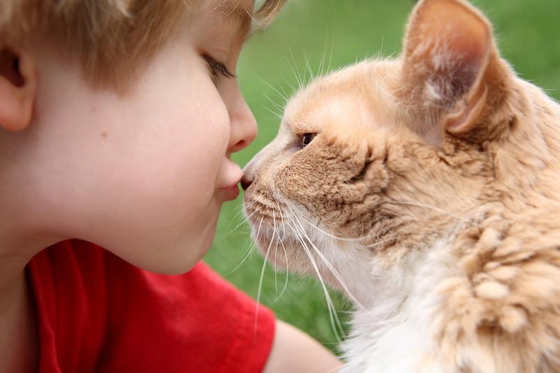 Как лечить лишай у ребенка?