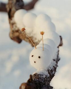 Гусеница из снега