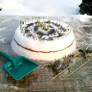 Торт из снега