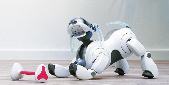 Собака-робот