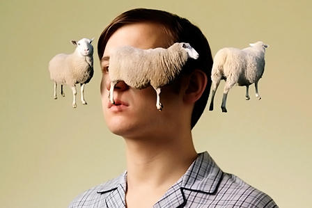 Считать овец перед сном