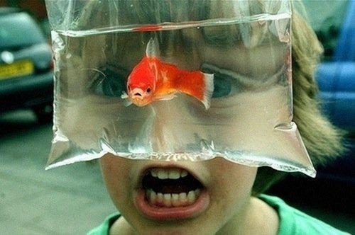 Такие смешные детки (20 фото)