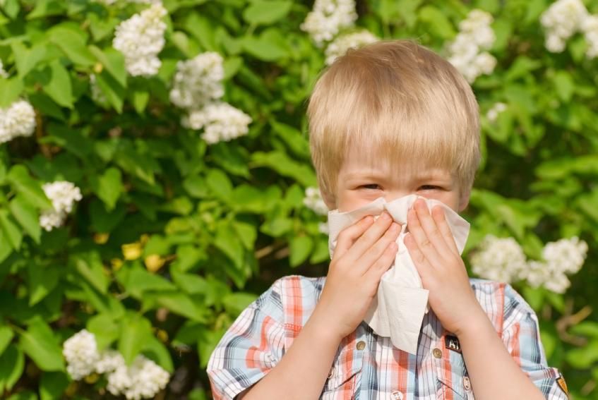 Аллергия у ребенка: как с ней бороться?